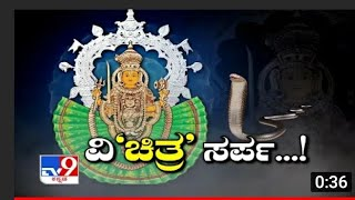 tv9 heegu unte Vichitra sarpa.real god video