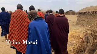 preview picture of video 'Tribo Masai'