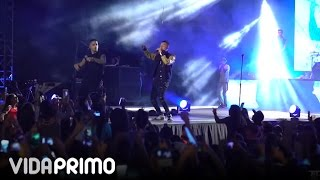 Conciertos con Maluma - Maluma (Video)