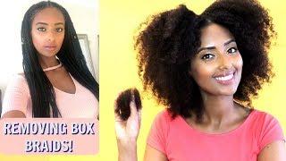 Box Braids Take Down   Removing Buildup   Natural Hair Shedding
