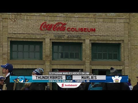 Thunderbirds vs. Marlies | Feb. 9, 2019