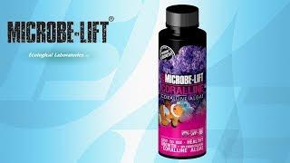 Microbe-Lift Coralline Algae Accelerator