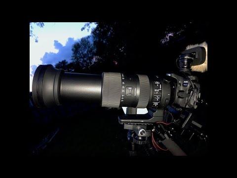 Nikon P1000 vs Sigma 60-600mm Sports Lens/Canon 80D
