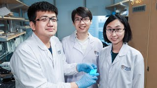 Newswise:Video Embedded nus-researchers-develop-stretchable-self-healing-and-illuminating-material-for-invincible-light-emitting-devices