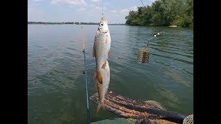 Рыбалка на кременчугском водохранилище возле черкасс