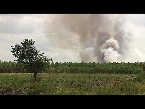 Γαλλία: Πυρκαγιά σε δάσος στο Μπορντό