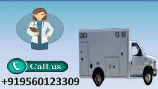 Hi-tech Road Ambulance Service in Danapur Bihta by Medivic at Low Cost