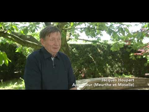 Voir la vidéo : Jacques Houpert, Apiculteur