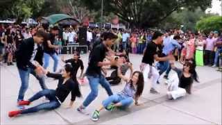 FLASHMOB | 17 SECTOR CHANDIGARH | THE DANCE MAFIA, RIPANPREET SIDHU',9501915706
