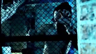 Amor Real - Yandel feat. Yandel (Video)