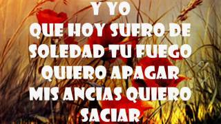 Maelo Ruiz Te necesito mi Amor