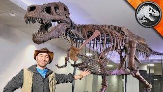 Jurassic World Explorers: WORLD'S BIGGEST T REX!   Jurassic World