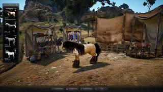 Black Desert T9 Awakening from T8: How to get Arduanatt / Pegasus Dream Horse