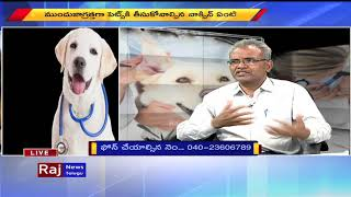 How To Take Care Of Pet Dogs And Protect Tips   Raj News Telugu