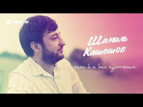 Шамиль Кашешов - Если б я был султаном | Премьера трека 2020