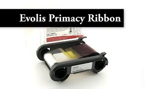 Zenius and Primacy 5 Panel Color Ribbon Video
