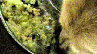 食べるの手伝ってあげるのに。。。 byきらら2010-8-25