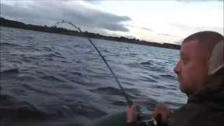 Рыбалка на волге в кинешме