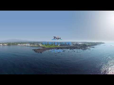 제주 해녀 물질 VR체험 -성게채취