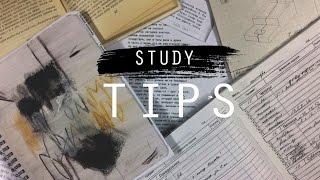 6 советов для учебы