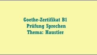 Lesen B1 Prüfung Goethe Kênh Video Giải Trí Dành Cho Thiếu Nhi
