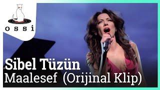 Sibel Tüzün / Maalesef (Orijinal klip)
