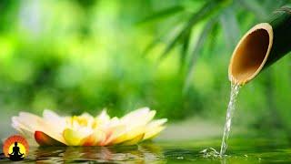 Relaxing Music, Healing Music, Spa Music, Meditation Music, Zen, Sleep, Study Music, Yoga, ☯3718