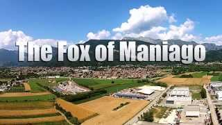 Why It Takes An Entire Village To Produce ONE Knife | The Story of FOX and Maniago Italy