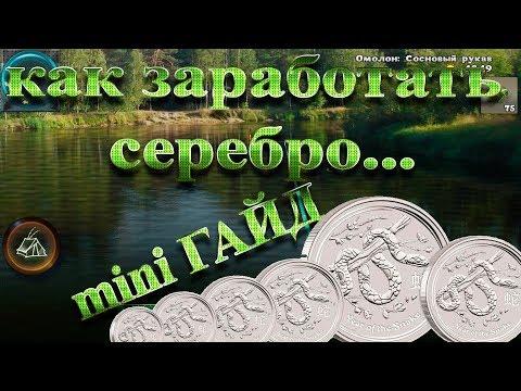 МИНИ Гайд: как заработать серебро?! Мир рыбаков. World of fishers.