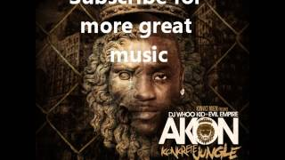 02 - Akon Used To Know Remix feat Gotye  Money J  Frost.wmv