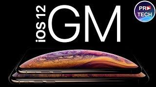 Обзор iOS 12 GM: проблемы, автономность, производительность.