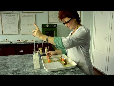 Сырая гречка с кефиром+сахарный диабет