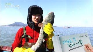 [다큐에세이121-1] 바다로 간 청년어부 김동희 씨