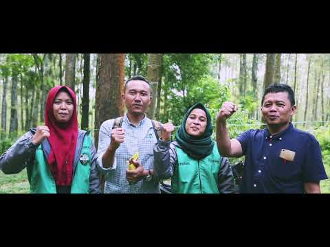 mp4 Lowongan Pertamina Foundation, download Lowongan Pertamina Foundation video klip Lowongan Pertamina Foundation