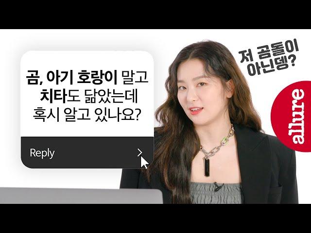 Pronunție video a Seulgi în Engleză