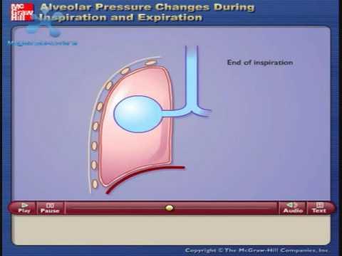 Tasa de la presión arterial después de 30