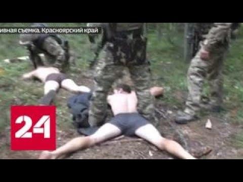 Черные старатели наладили добычу золота в лесной глуши - Россия 24