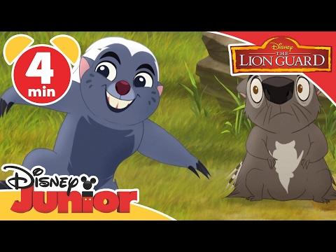 Magical Moments | The Lion Guard: Bunga The Immune Honey Badger  | Disney Junior UK