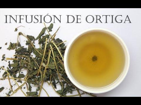 Como hacer té de ortiga y algunos beneficios de tomar esta infusión para la salud del cuerpo