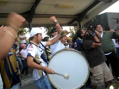 """""""Tequila - PLUS PUMAS"""" Barra: La Plus • Club: Pumas"""