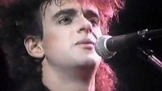 Soda Stereo En Viña Del Mar 1987 (Signos)