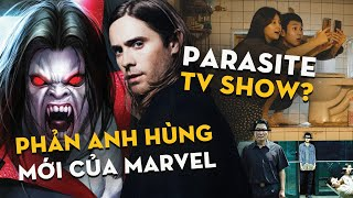 Phê Phim News: Trailer Mới Của Ma Cà Rồng & Góa Phụ Đen | Ký Sinh Trùng Sẽ Có TV Show?