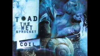 Toad The Wet Sprocket - Amnesia