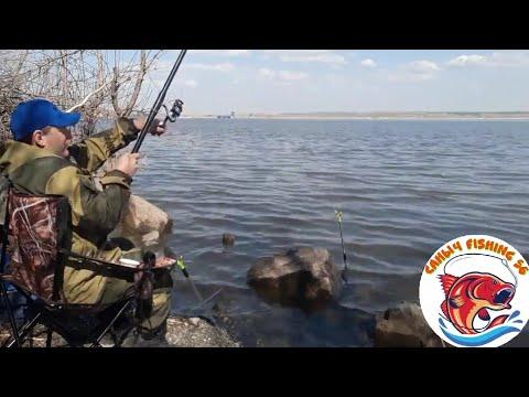 Весенняя рыбалка/Ловля плотвы на водохранилище/рыбалка на поплавок с берега/My Fishing