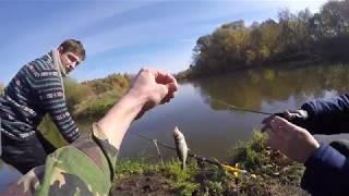 Рыбалка на озере в д аборино московской области