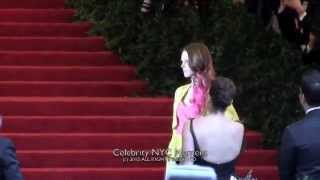 Коко Роша, Coco Rocha puts a pink on it at the MET gala in NYC