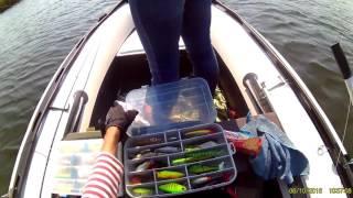 Темрюкские лиманы рыбалка на карте
