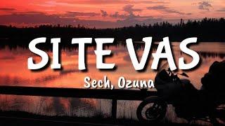 Sech, Ozuna   Si Te Vas (LETRA)