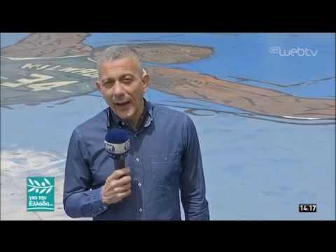 Ο Σ. Σαρέσκος για τη δωρεά του Αντετοκούνμπο μετά την καταστροφή στο Μάτι | 21/05/2019| ΕΡΤ