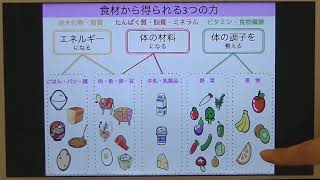 宝塚受験生のためのダイエット講座「合格するためのダイエットに必要なこと」のサムネイル